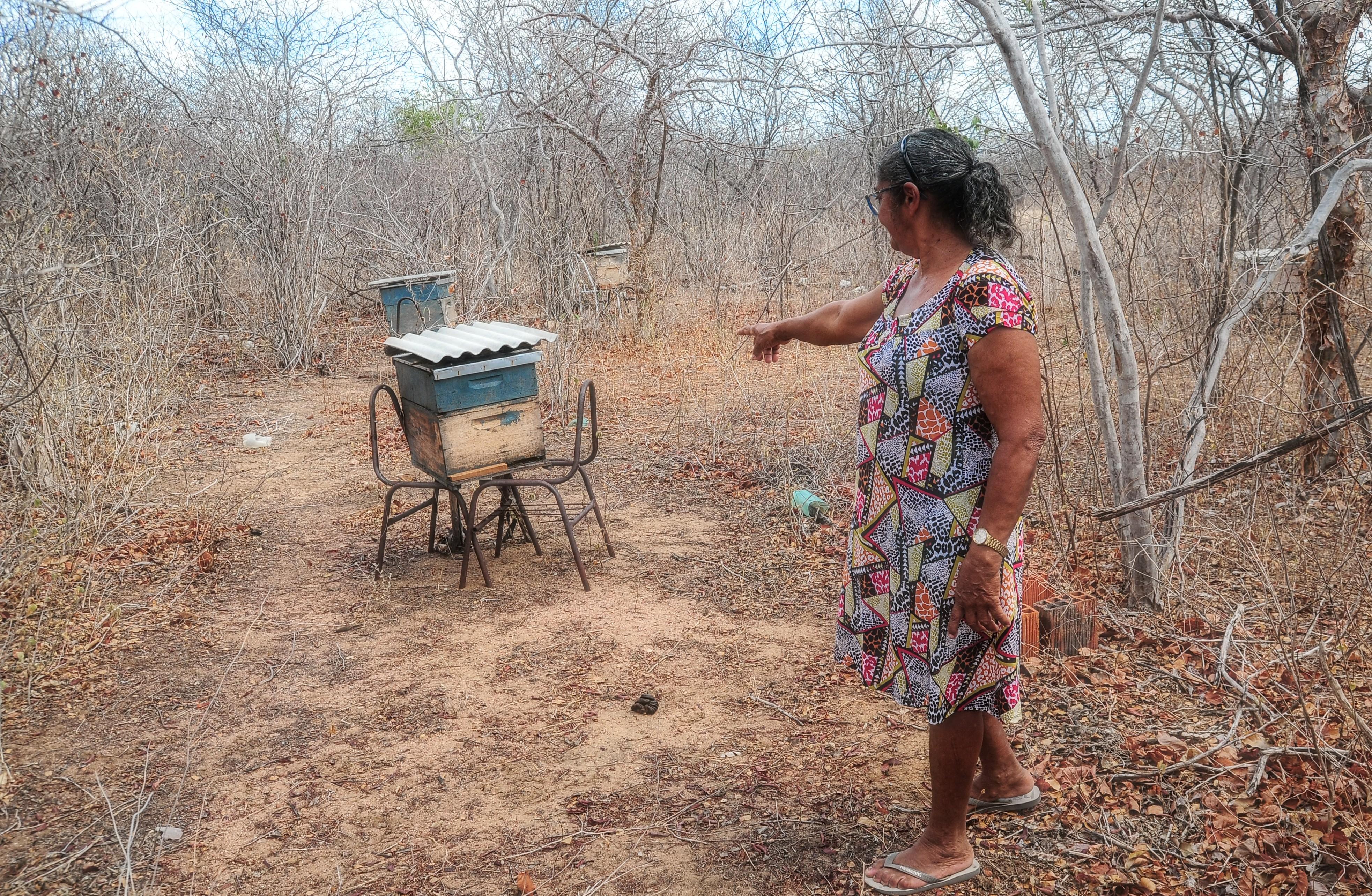 Grupo de mulheres de Mulugunzinho recebe assessoria técnica para criação de abelhas