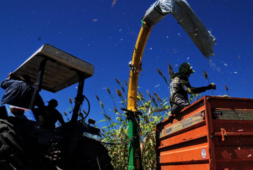 Programa Mossoró Rural será lançado nesta terça-feira (27)